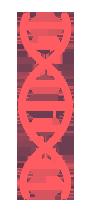 genomic.png